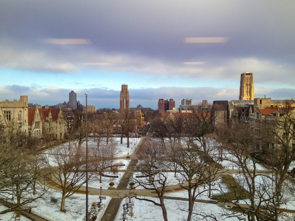 university_of_chicago_quad20161226
